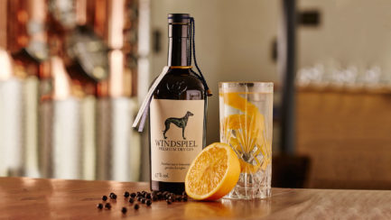 Windspiel Premium Dry Gin, 47,0 % Vol. (500 ml)
